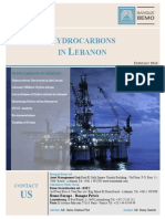Hydrocarbons in Lebanon Report February 2014