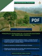 V.- Sistemas Agroforestales Tropicales
