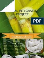 sugarcaneindustry-131014020904-phpapp02