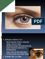 Mata Anatomy