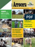 Revista Arrocera IV Edicion