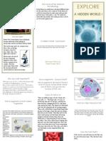 cells brochure