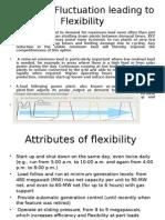 Power Plant Flexiblity