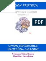 CL 7 - Función Proteica