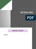 Deteksi DNA