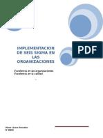 Implementacion de Seis Sigma en Las Organizaciones