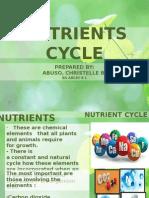 Presentation Nutrient Cycle