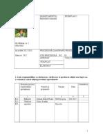 Proc Elaborare Proc 1