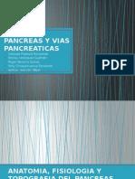Pancreas y Vias Pancreaticas V
