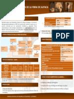 CADENA PRODUCTIVA DE LA FIBRA DE ALPACA