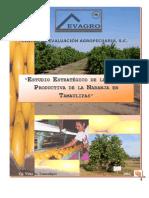 Estudio estratégico Tamaulipas