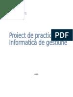 Proiect de practica la informatica de gestiune