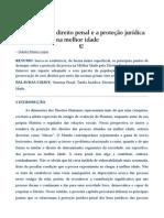 A Expansão Do Direito Penal COMENTADA