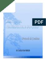 04_t_16h25_charles_servico_de_propedeutica_do_colo.pdf