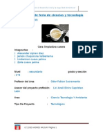 Proyecto de feria de ciencias y tecnología.docx