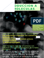 Introduccion a Biomoleculas