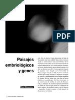 Embriologia Genes y Matematicas