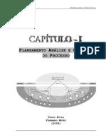 Planeamento Analise e Controlo Do Processo