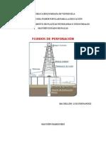 LUIS FLUIDOS DE PERFORACION.docx