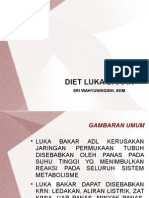 Diet Luka Bakar