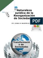 13° SEMANA NATURALEZA JURIDICA DE LA REORGANIZACION DE SOCIEDADES - copia (2)