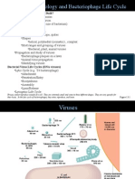a11a BactViruses