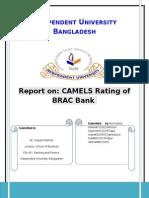 CAMELS Report