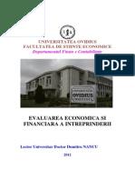 Evaluarea Economica Si Financiara Aintreprinderii