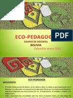D. AMBIENTAL EDO-BOLIVIA.pdf