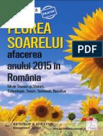 Floarea Soarelui. Afacerea Anului 2015.141001125024