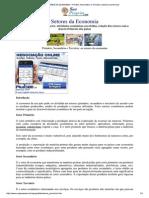 OS SETORES DA ECONOMIA -...pdf