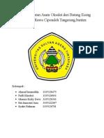 Proses Pembuatan Asam Oksalat Dari Batang Eceng Gondok Di Rawa Cipondoh Tangerang