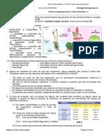 ficha-de-preparacao-para-o-teste-intermedio-2.pdf