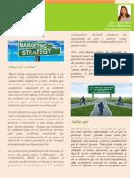 Importancia de Las Tacticas y Estrategias de Mercadeo
