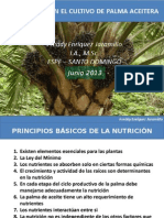 PRINCIPIOS DE NUTRICIÓN EN PALMA ACEITERA.pptx