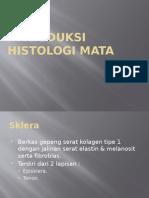 Introduksi Histologi Mata