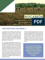 Biocarbón