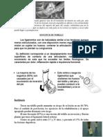 esguince+protocolo+ejercicios