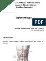 Versão Final Anatomia I