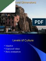 Cultural Dimensions.ppt