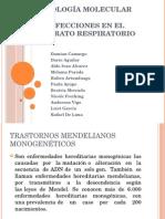 Mutaciones en Aparato Respiratorio