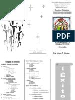 12mo. Brochure II - Bosquejo de Contenido