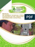 Manual de Normas Tecnicas Ric