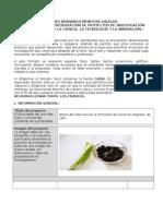 Formato Resumen Proyecto 2015