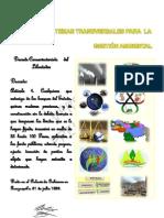gestion_ambiental,fiscalizacion.pdf
