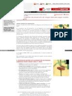 Www Mapfre Com Fundacion HTML Revistas Gerencia n107 Estudio