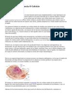 Celulas Madre Alopecia O Calvicie