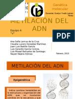 Metilación ADN