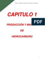 Cap1-Procesos de Produccion y Manejo de Hidrocarburos
