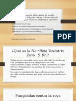 Evaluación Del Extracto de Tomillo (Thymus Vulgaris)